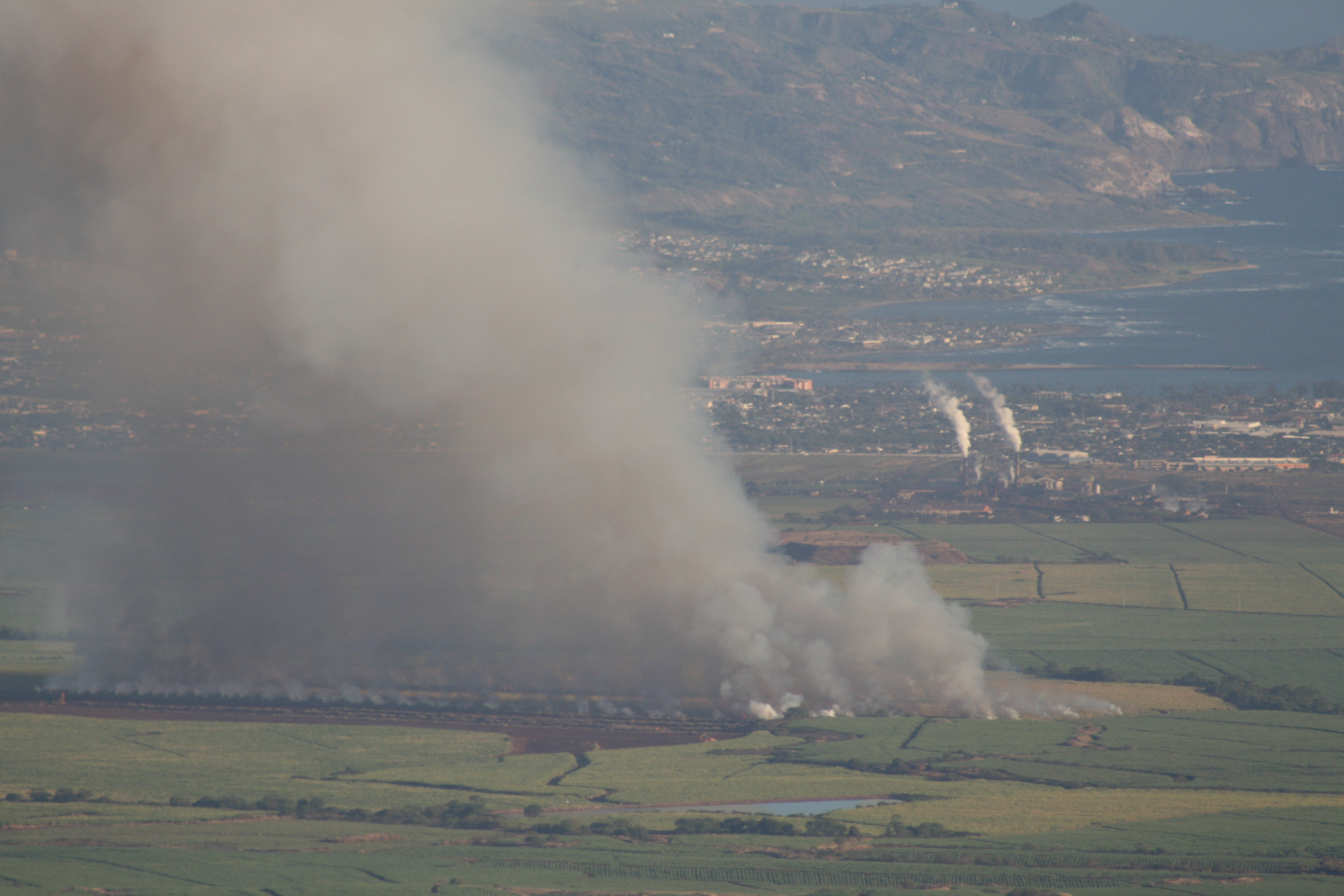 Cane Fire with Power Plants in Background